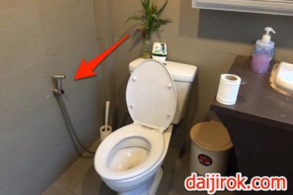 20150316a_toilet